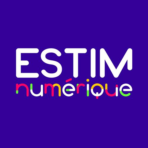 Logo-ESTIMnumerique